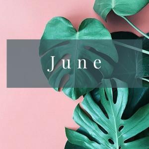 February (7)