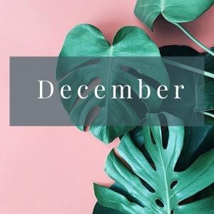 February (11)