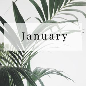 February (12)